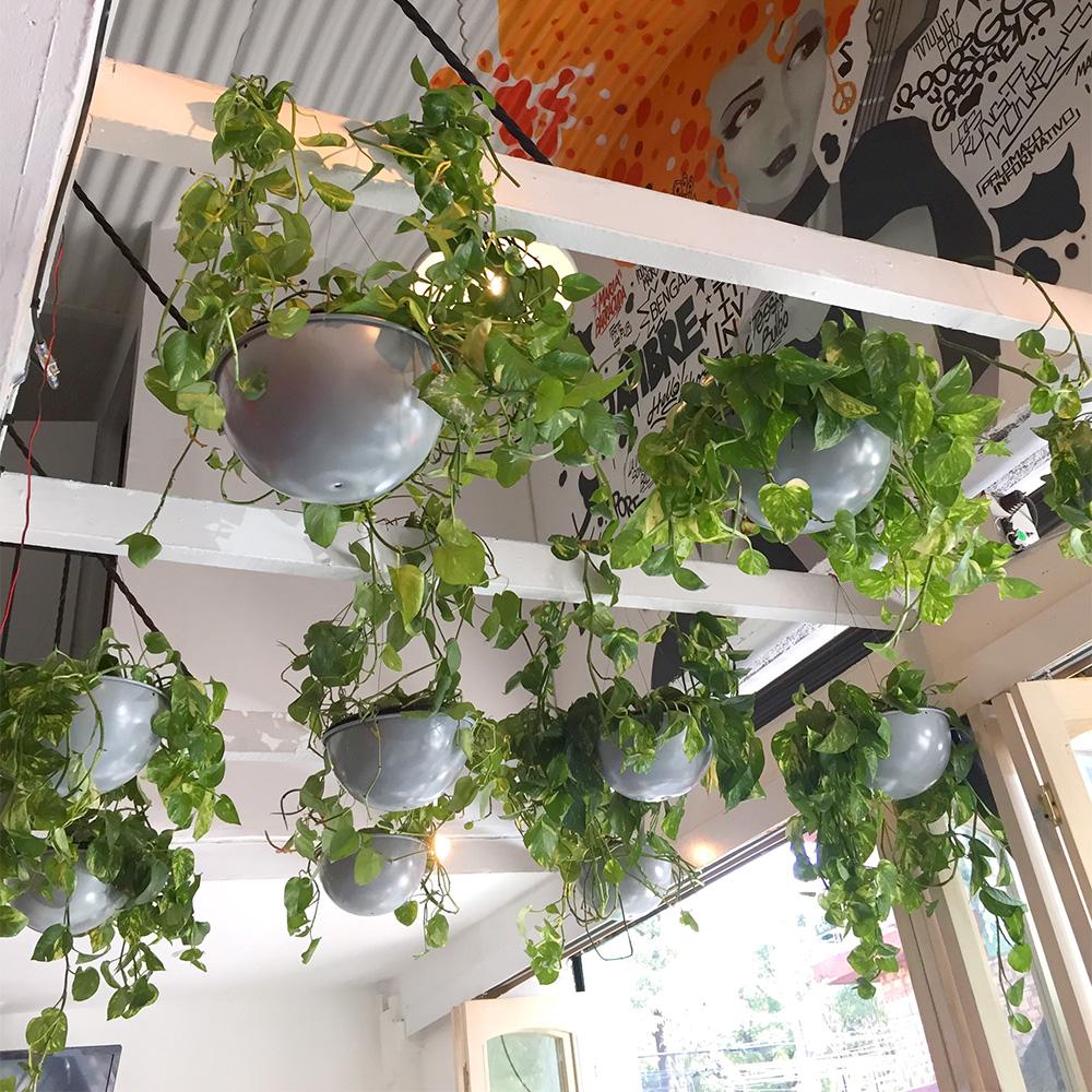 diseño de ambientaciones verdes para su hogar