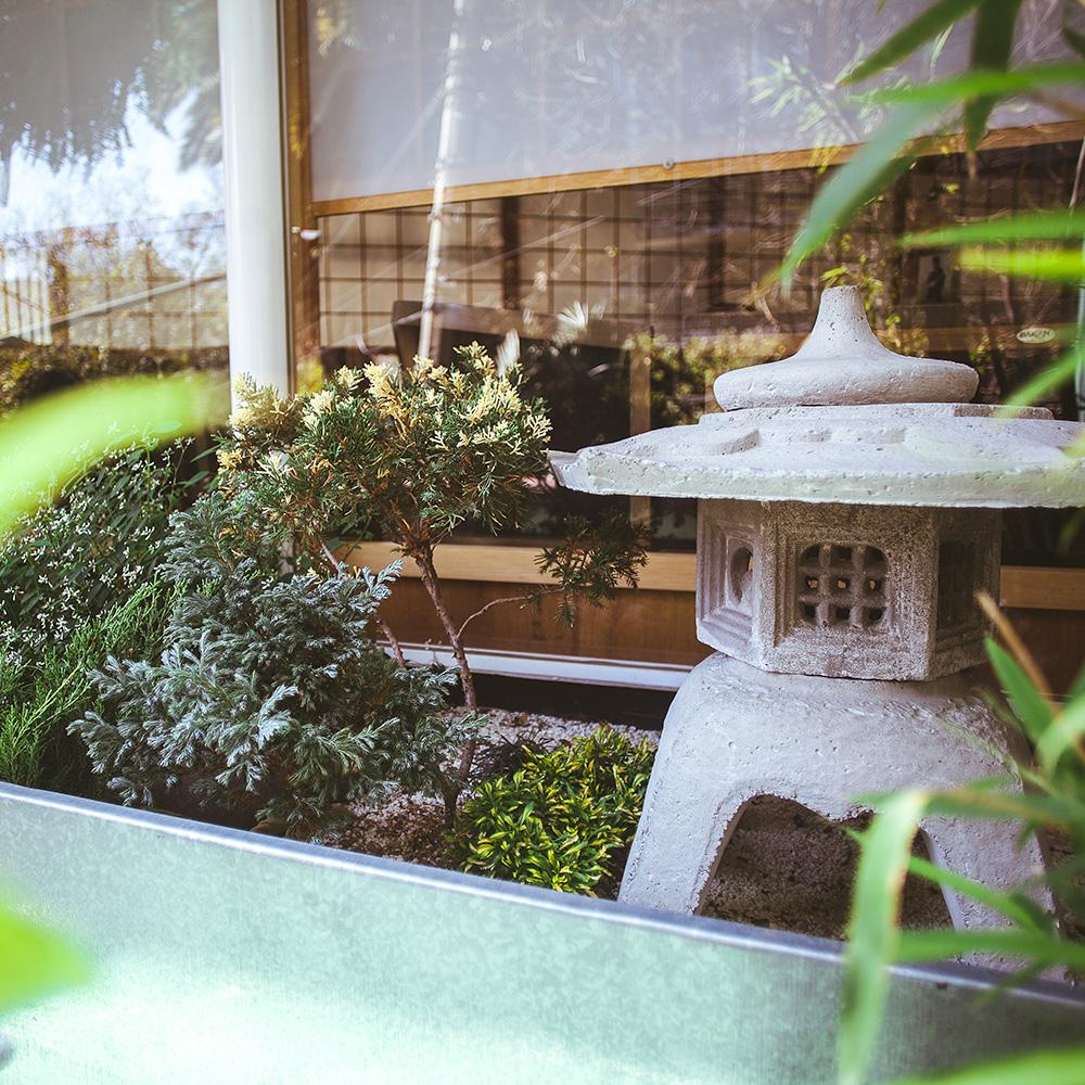diseño de ambientaciones verdes para su restaurant